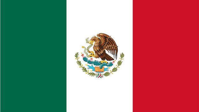 MEXICKÝ ZPRAVODAJ